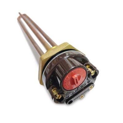 ТЭНовая группа RDT 3,0 кВт 70гр. ИТА+(ТЭН 3,0 кВт + Термостат  15A без термозащиты,Кольцо уплотнительное D42мм ) заливка композитная